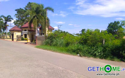 Lot For Sale at Cecilia Heights Buhangin Davao City