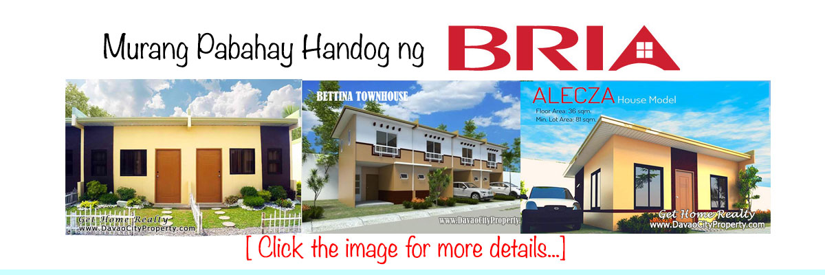 house-and-lot-for-sale-in-bria-homes-panabo-carmen-tagum-maco-davao