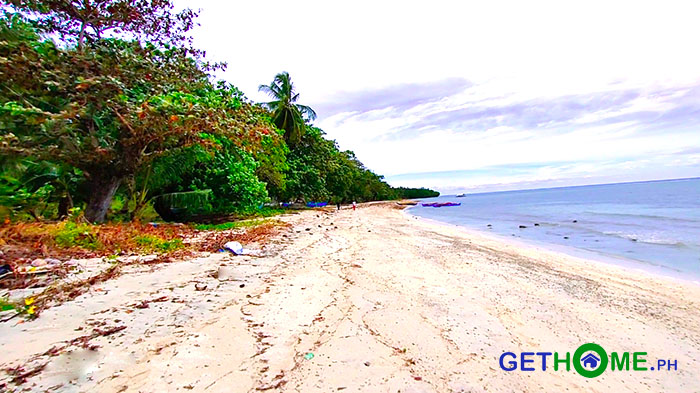 4 ha Property with BEACH FRONT Lot For Sale in Gov. Generoso Davao Oriental
