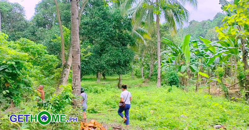 Farm Lot For Sale in Toril Davao City 3